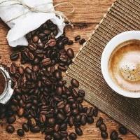 Συνοδευτικά - Αξεσουάρ Καφέ